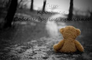 В Смоленске «плюшевый мишка» второй раз взломал сайт Горводоканала