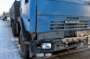 В Смоленской области задержан водитель КАМАЗа, насмерть сбивший женщину