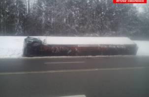 На трассе М1 в Смоленском районе перевернулась фура