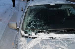 В Починковском районе легковушка сбила пешехода