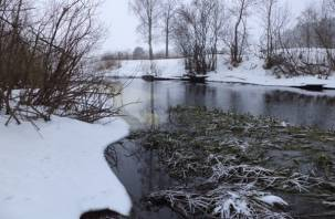 В Смоленском Поозерье происходят необычные природные явления