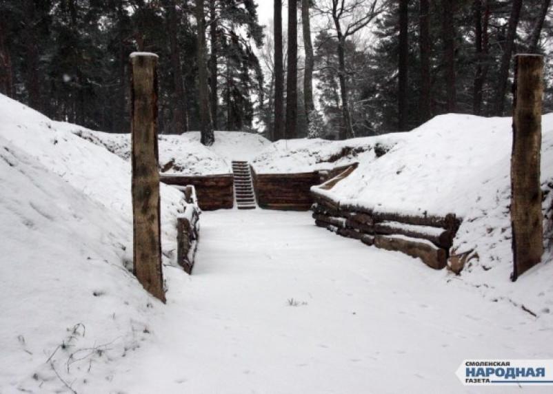 В Красном Бору устроили спил деревьев под военный лагерь