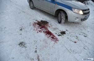 Пожарный, раненный «ольшанским стрелком», идет на поправку