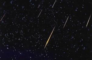 Сегодня ночью на Смоленск обрушатся звезды