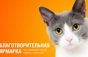 В Смоленске пройдет благотворительная ярмарка в поддержку животных