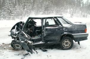 В Руднянском районе по вине водителя два человека получили сильные увечья