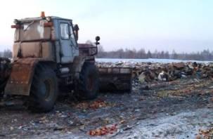 Под Смоленском закопали гранаты и грибы