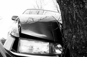 В Ярцевском районе водитель БМВ влетел в придорожное дерево