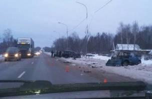 Водитель госпитализирован. В Рославльском районе произошло крупное ДТП