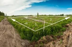 Правительство отдало в аренду земли смоленской научной сельскохозяйственной станции