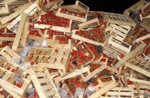 Около 150 тонн фруктов уничтожены в Смоленске