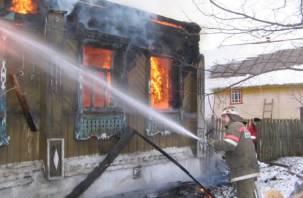 В Починковском районе пожар унес жизнь человека