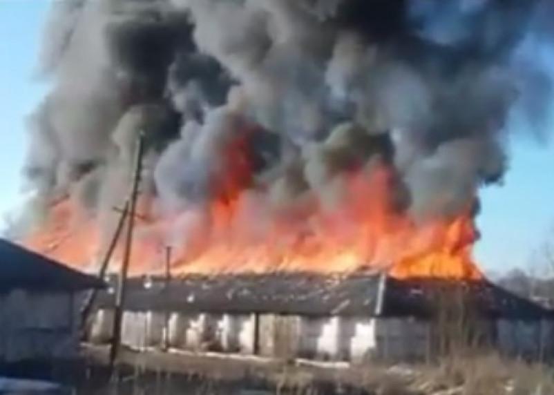 В Сети появилось видео крупного пожара в Дорогобуже