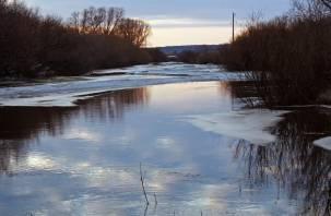 Спасенная из ледяной воды смолянка погибла