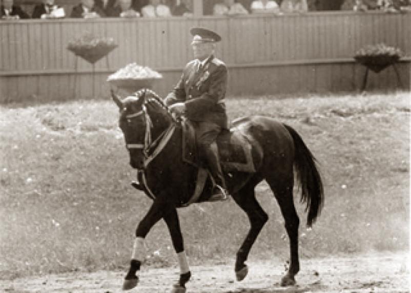 В Смоленске объявлен сбор средств на памятник выдающемуся тренеру конного спорта