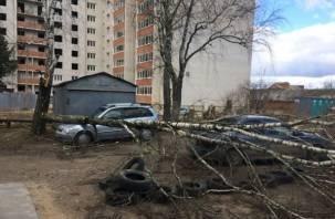 Еще две смоленские машины были разбиты упавшими деревьями
