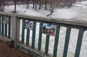ВИДЕО: Вязьмичи «изгоняют» главу района фотовыставкой вдоль «убитой» дороги