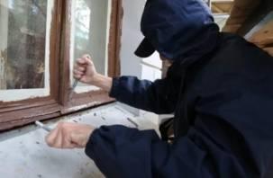 В Новодугинском районе поймали дачного вора