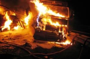 В Смоленске огонь уничтожил шесть автомобилей