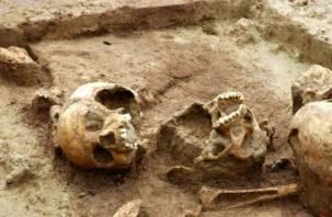 В Вязьме откопали древнее кладбище