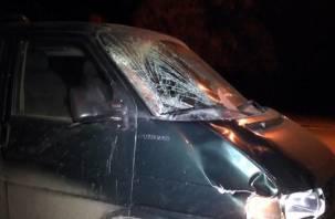 В Смоленской области столкнулись два микроавтобуса и легковушка