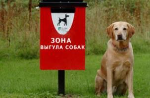 В Смоленске появится первая площадка для выгула собак