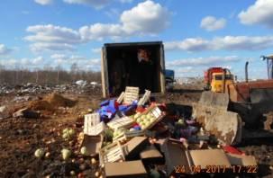 В Рудне уничтожили несколько тонн овощей и фруктов