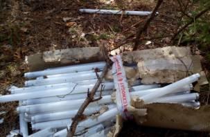 В сосновом лесу под Смоленском нашли склад неисправных неоновых ламп