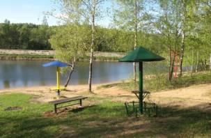 Смоляне больше не искупаются в Реадовском озере