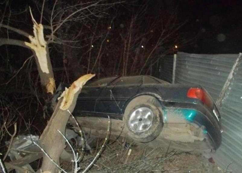Под Смоленском парень на иномарке влетел в дерево
