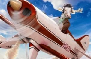 Смоленские коровы будут летать на японских самолетах. Но частями
