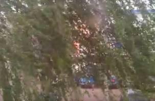 В Смоленске прошёл ливень с сильнейшим ветром