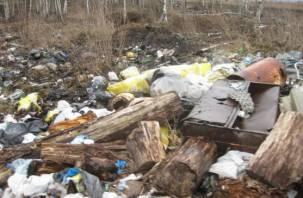 На Смоленщине нашли части тел животных и свалки вредных отходов