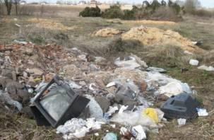 В Гагаринском районе начали ликвидировать мусорные свалки, но не все