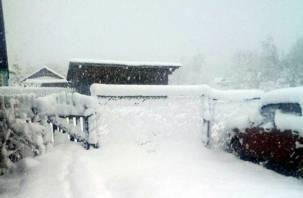 На Смоленщине в некоторых районах выпал снег