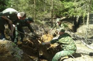В Смоленском Поозерье восстановлен наблюдательный пункт 43-й армии