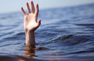 Смолянин пошел купаться и утонул в озере