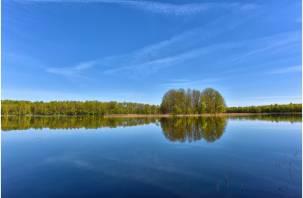 Насколько чистый воздух в Смоленском Поозерье?
