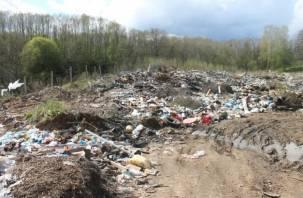 Смоленское Поозерье зарастает мусорными и строительными отходами