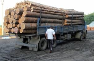 В Дорогобужском районе грузовик с бревнами обрушил столб на байкера
