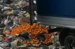На Смоленщине уничтожена очередная партия овощей и фруктов