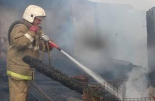 Смолянин погиб при пожаре в своем доме