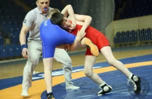 Впервые в Смоленске прошел межрегиональный турнир по спортивной борьбе