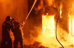 Смоляне спасли женщину из горящего дома