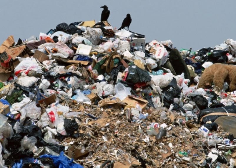 Схема утилизация мусора в Смоленске оказалась «мусором»
