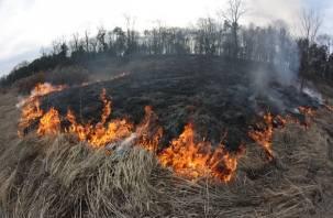 На Смоленщине возрастает класс пожарной опасности
