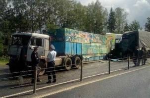 На трассе М-1 под Смоленском цирковой фургон отбросило на машины
