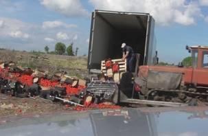 Смоленские таможенники уничтожили более 80 тонн польских яблок и томатов