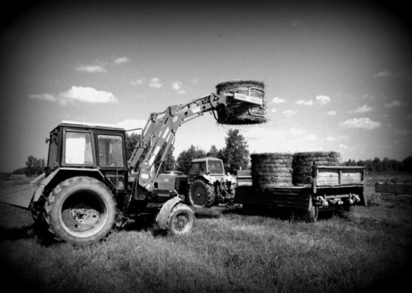 В Смоленской области сотрудники сельхозпредприятия заявили о рейдерском захвате