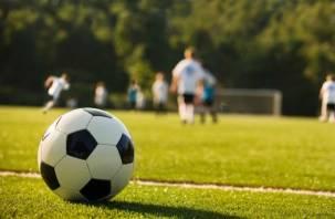На футболе подрались смоленский и брянский тренеры